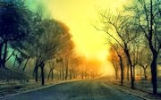 paisaje con neblina
