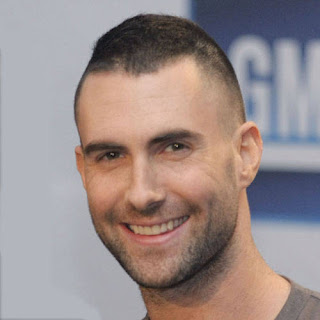 Adam Levine Hairstyles for Men - Male Celebrity Haircut Hairstyle Ideas