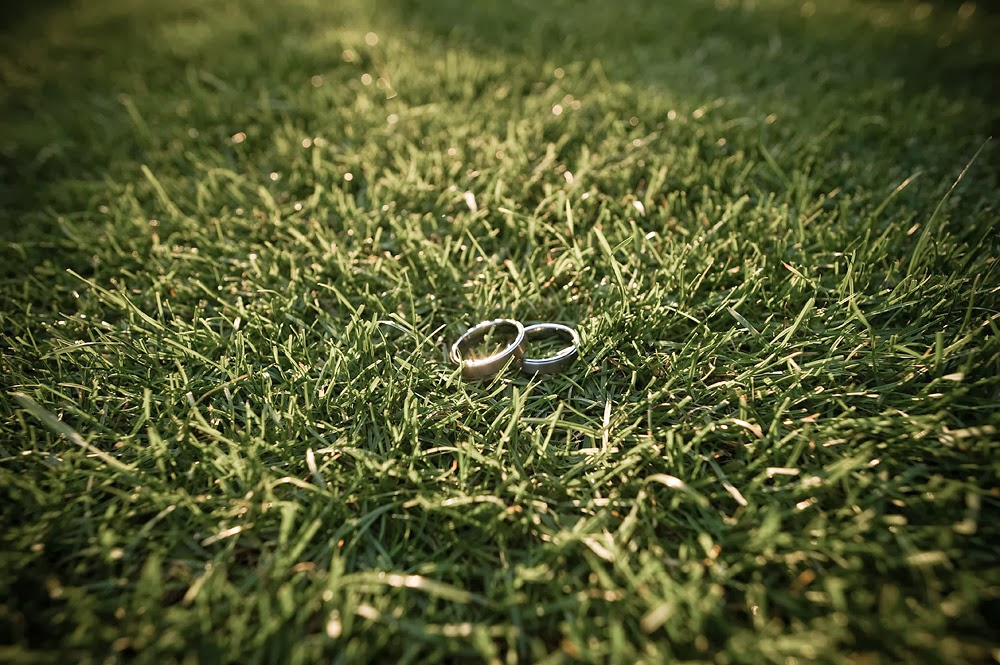 Wedding rings on the Hall at Fauntleory's lawn - Patricia Stimac, Seattle Wedding Officiant