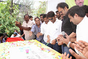 Ram Charan 29th Birthday Celebrations-thumbnail-6