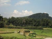 Pemandangan di sekitar Pondok Kopi Kawa