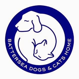 We are The Only Bull Terrier Rescue working in association with Battersea Dogs & Cats Home