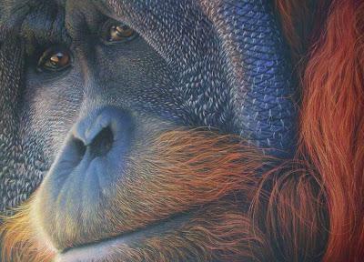 cuadros-realistas-de-animales-pintura-al-oleo