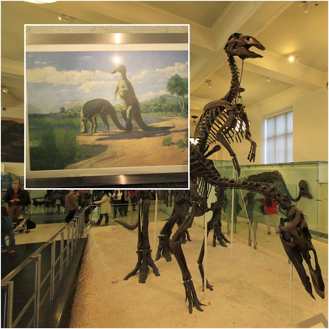 The ornithischians dinosaurs at American Museum Natural History in New York City, USA