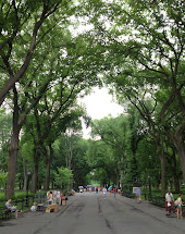 Hartenstein Jogging Barefoot In Central Park
