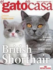 Brinde Gratis Revista El Gato en Casa