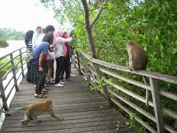 Inilah Tempat Wisata di Jakarta Utara yang Wajib dikunjungi