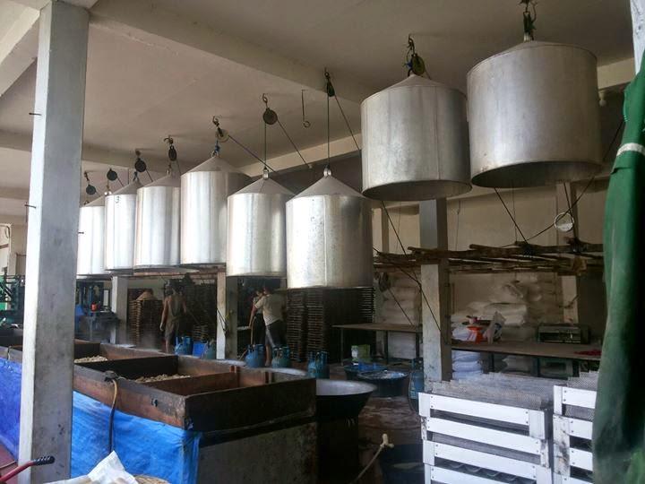 pabrik kerupuk ikan mentah