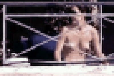 an 8-bit rendering of an image of an alleged Kate Middleton sunbathing topless