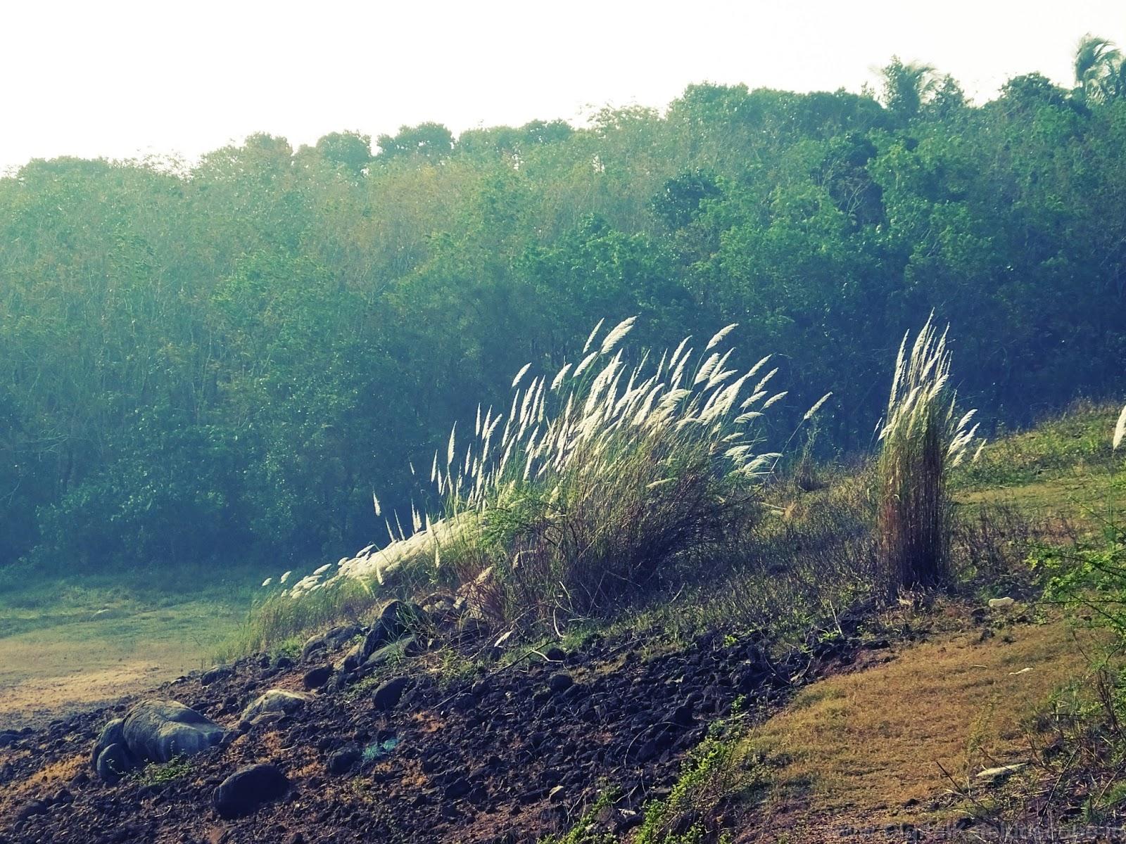 Thrissur Travel Blog