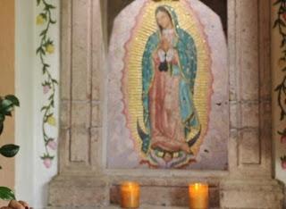 Imagenes De La Virgen Con Rosas - APARICIÓN DE ESCARCHAS EN IMAGEN DE ROSA