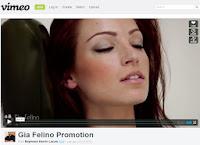 http://vimeo.com/45433855