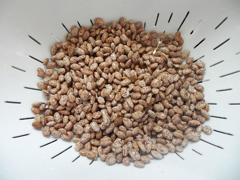 Pinto beans, rinsed and sorted