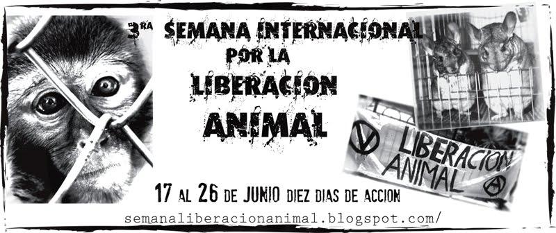 Informativo de liberación animal