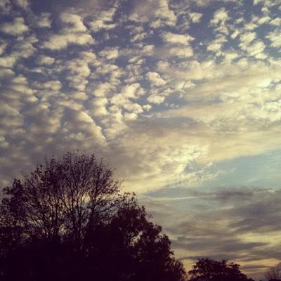 Cloud Fluffs