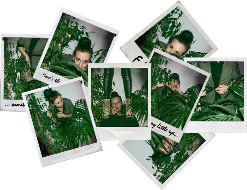 For Peet's Sake blog polaroid shots