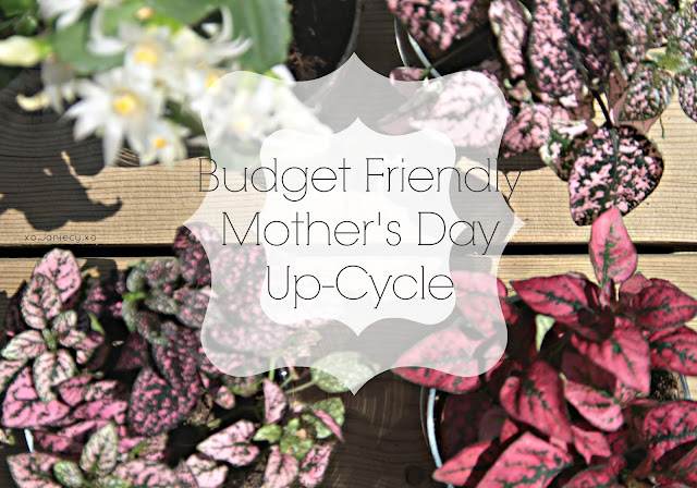 Budget Friendly Mother's Day Up-Cycle (xo.Janiecy.xo)