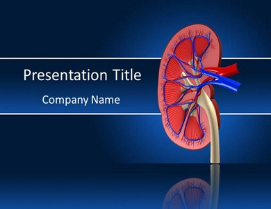 Medical powerpointppt templates an authorized proficient will have the capacity to make an informed analysis on the suffering the individual is experiencing a kidney stones side effect toneelgroepblik Images