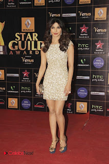 Priyanka Chopra  Leggy Pictures at Renault Star Guild Awards 2013  0009