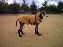 Juanito preparado para el frío