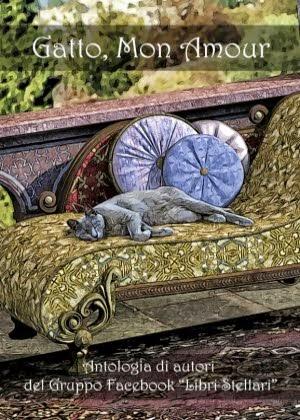 Gatto, Mon Amour