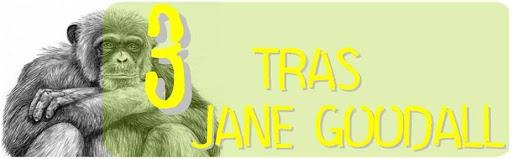 Tres tras Jane Goodall