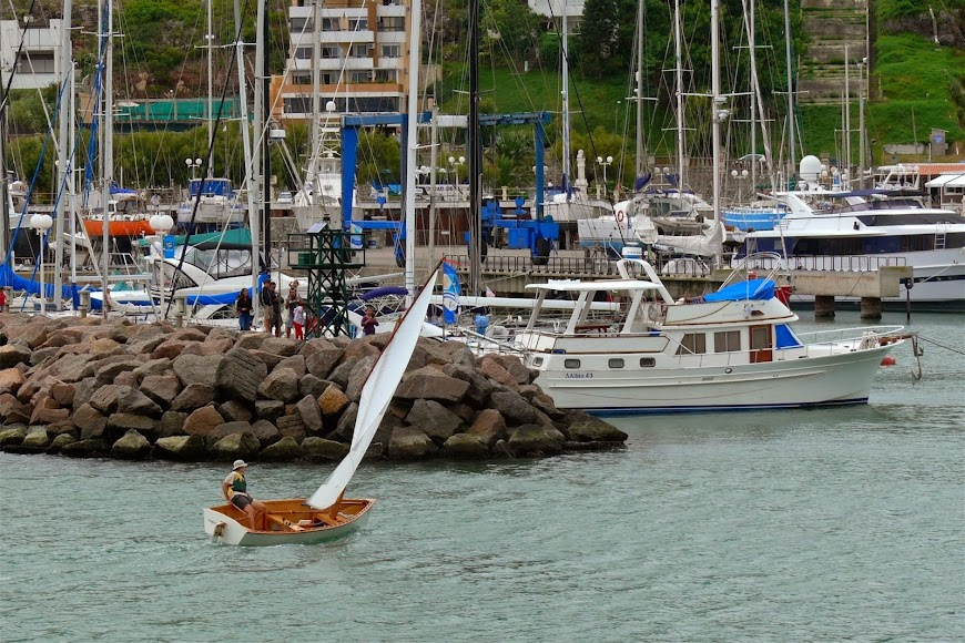 Goat Island Skiff (GIS), velero fabricado en Uruguay