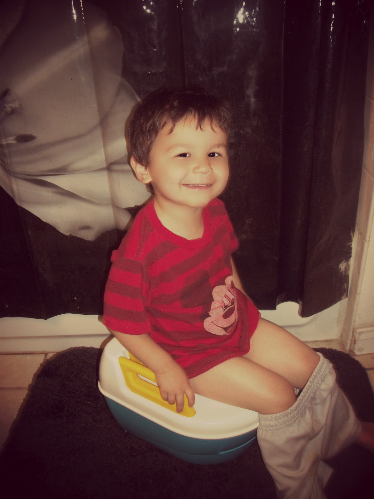 The Potty Train Potty Toilets For Oblong Toilets How To