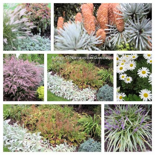 A guide to northeastern gardening january 2013 - Gardening in october a brief to do list ...