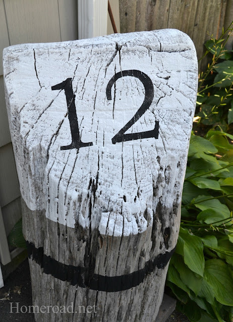 driftwood+stump+7.jpg