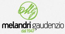 http://www.melandrigaudenzio.com/
