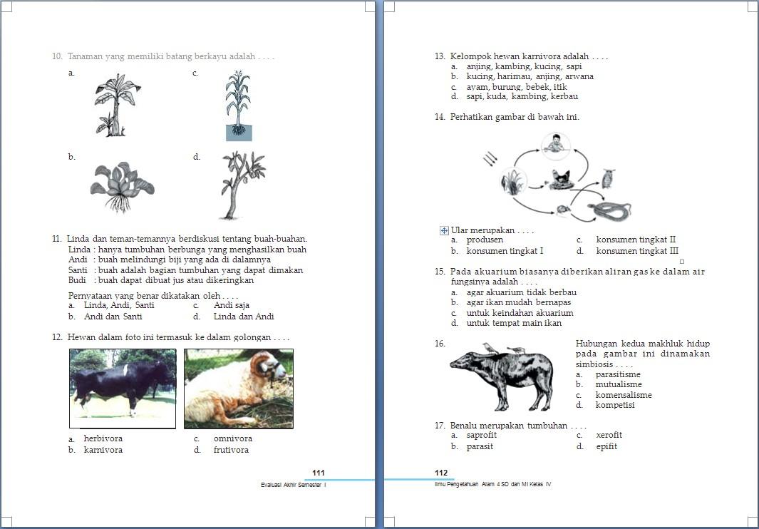 Materi Matematika Smk Kelas 10 Semester 2 Newhairstylesformen2014 Com