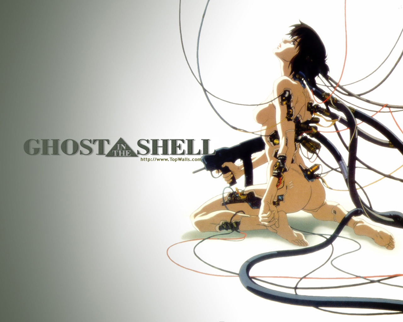 Motoko kusanagi tv ghost in the shell vs kasumi dead or ali 6