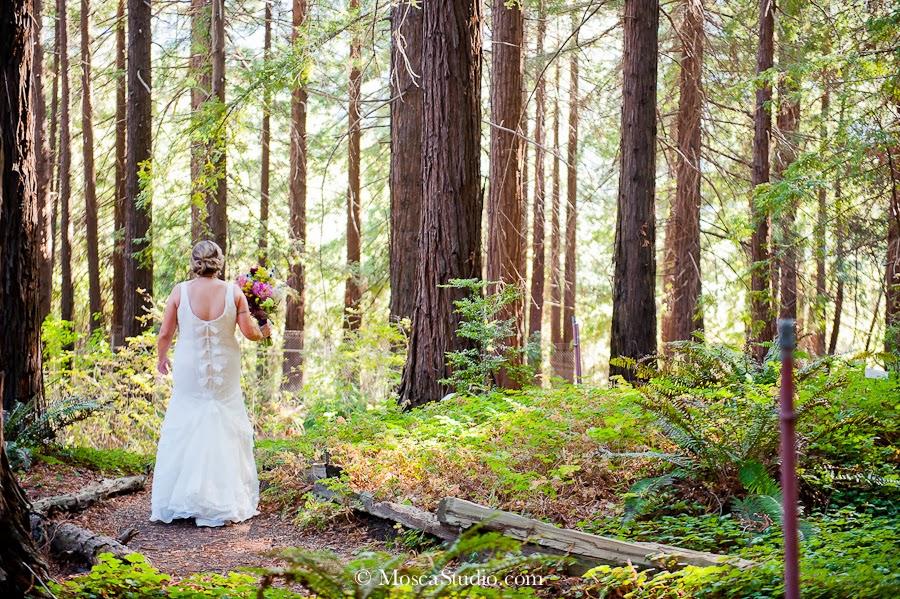 University of california botanical garden destination wedding day for Berkeley botanical garden wedding