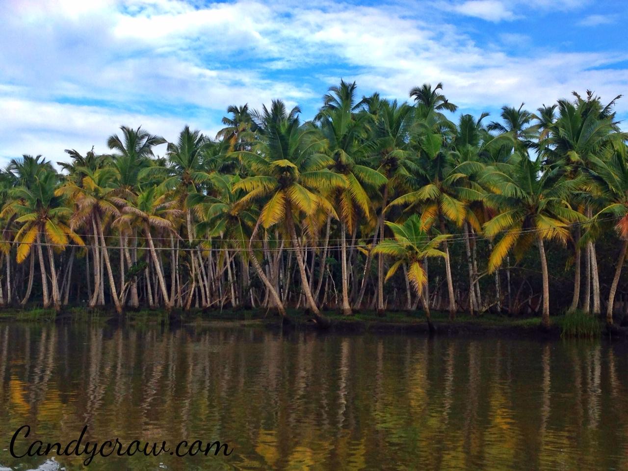 Trivandrum, kovalam, poover island