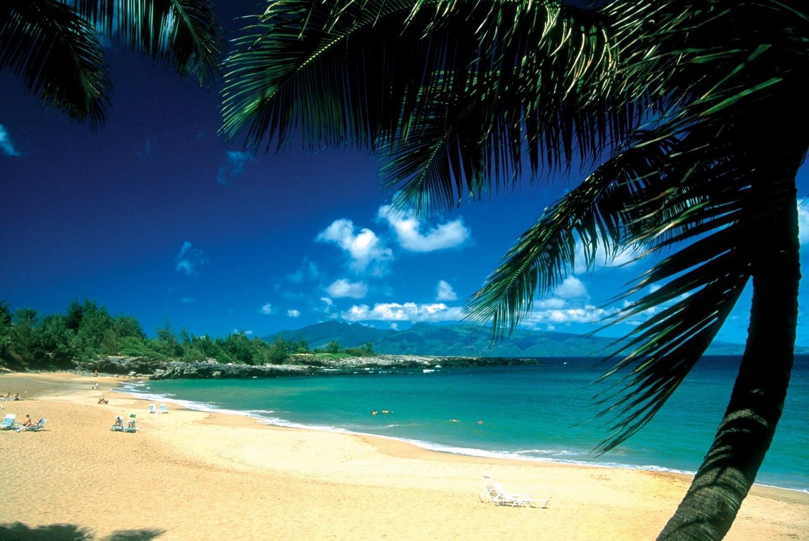Package deals nz to hawaii