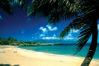 Honeymoons And Destination Wedding Travel Packages To