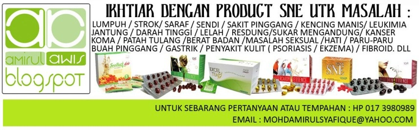 PENGEDAR PRODUK SNE MARKETING
