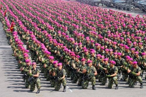 Kekuatan Marinir Indonesia Masuk Tiga Besar di Dunia