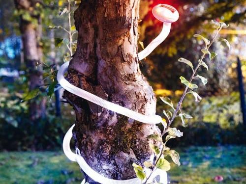 Cool Outdoor Lighting Solutions