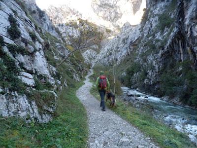 ruta-tresviso-rio-urdon-cantabria-enlacima