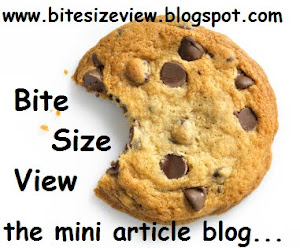 Welcome to Bite Size View the Mini-Article Blog!!!