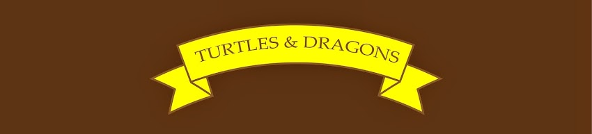 TURTLES and DRAGONS