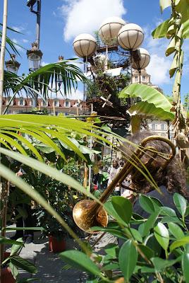 Immagine: muscista tra le piante