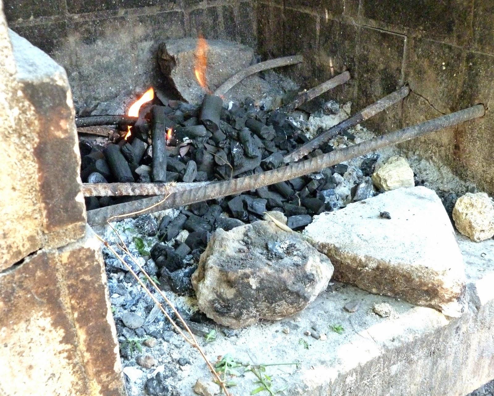 tarragonain-carbón-fuego