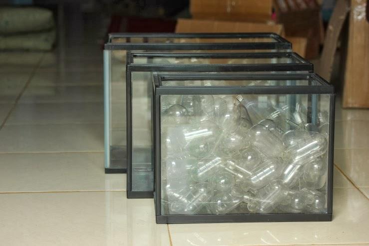 Jual Aquarium Gex cocok untuk Hamster Reptile dan Ikan