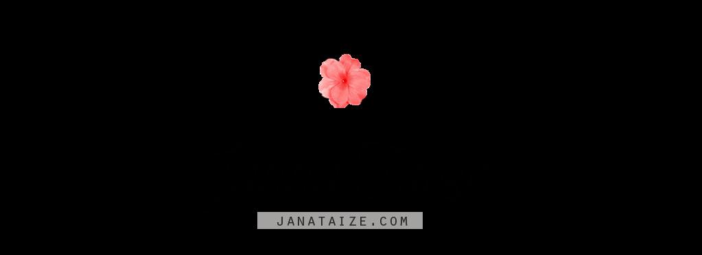 Blog Janna Taize