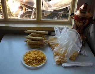 31.08. Запеченную и охлажденную кукурузу обшелушиваю, укладываю в пакеты и отправляю на заморозку.