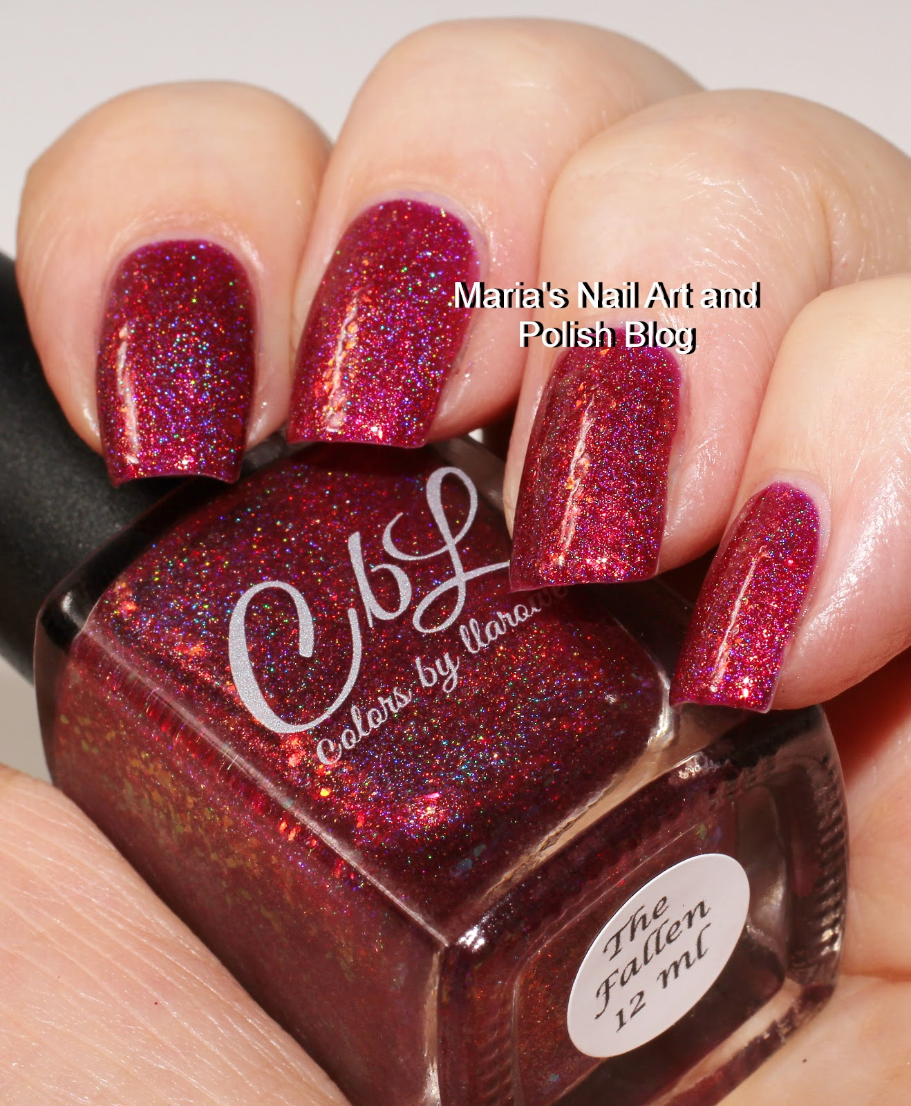 Marias Nail Art and Polish Blog: Colors by Llarowe The Fallen swatches