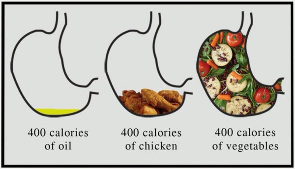 What 400 Calories Look Like